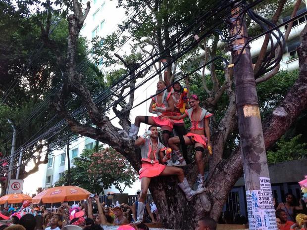 As Muquiranas; Salvador; Carnavala; Bahia (Foto: Henrique Mendes/G1)