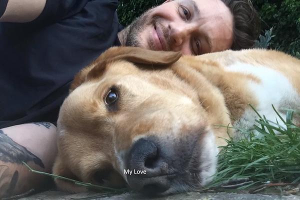 Tom Hardy e seu cachorro Woody; labrador morreu na última semana (Foto: Reprodução)