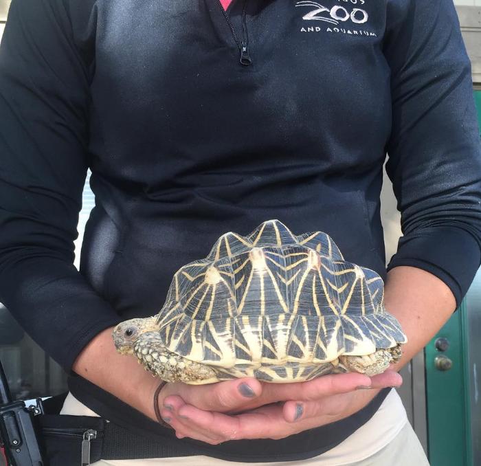 zoo (Foto: reprodução Instagram)