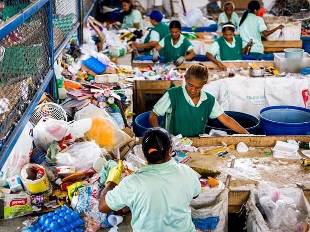 Trabalho de coleta realizado no Galpão de Triagem no bairro do Benedito Bentes (Foto: Jonathan Lins/G1)