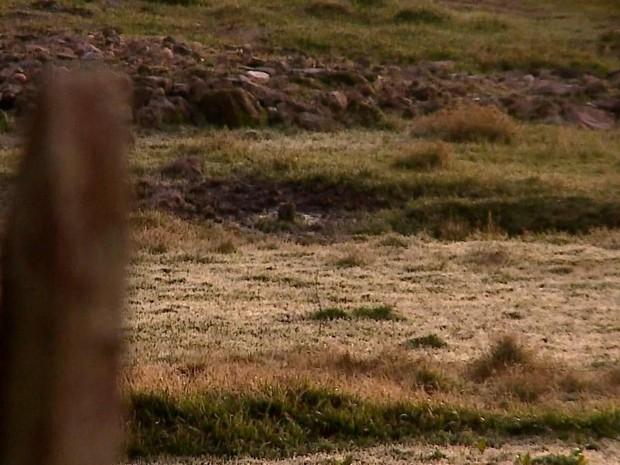 Campos amanheceram com o chão branco no estado (Foto: RBS TV/ Reprodução)