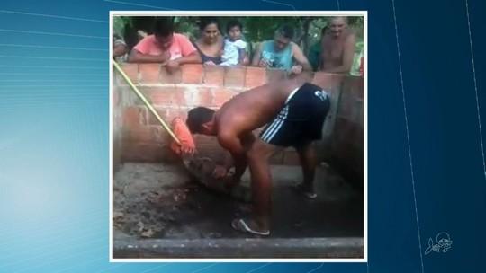 Moradores no Ceará acham jacaré de dois metros no quintal de uma casa