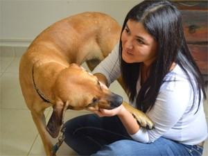 A veterinária Bianca Shimizu, 35 anos, resgatou a cadela que defendia sofá em estrada de Ribeirão Preto (Foto: Adriano Oliveira/G1)