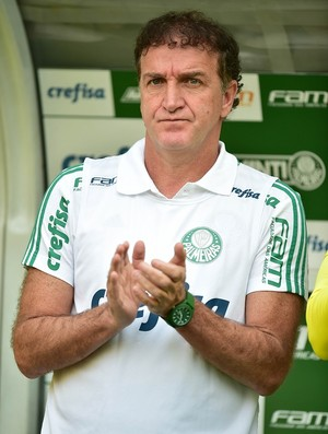 Palmeiras X Vitória Cuca (Foto: Marcos Ribolli)