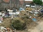 População de Ananindeua denuncia o acúmulo de lixo nas ruas