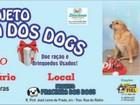 'Natal Solidário' arrecada ração para animais e brinquedos em bom estado