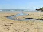Laguna faz operação para fechar esgotos que desembocam nas praias
