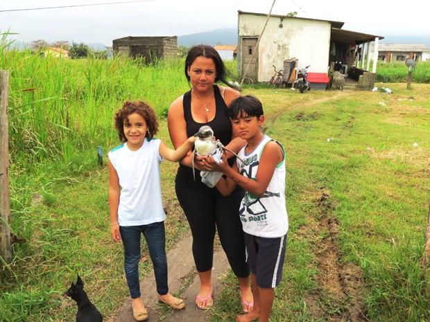 Família resgatou pinguim em Ilha Comprida, SP (Foto: Arquivo Pessoal / Cristian Negrão da Silva)