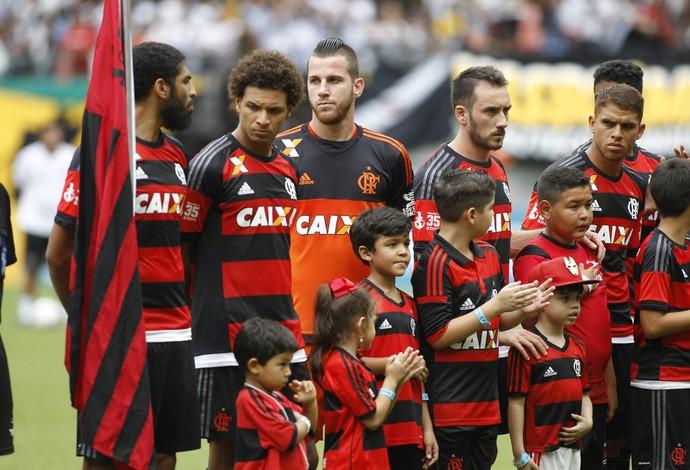 Flamengo bandeira Wallace Arena da Amazônia (Foto: Gilvan de Souza/ Flamengo oficial)