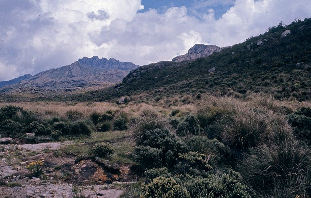Viagem ao Parque Nacional de Itatiaia (Foto: Marcus Vinicius Gasques / Autoesporte)
