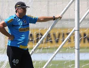 OSWALDO OLIVEIRA treino botafogo (Foto: Satiro Sodré / AGIF)