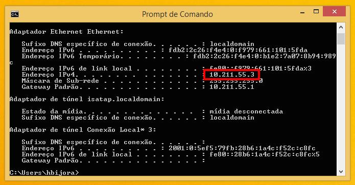 Endereço de IP interno no Windows (Foto: Reprodução/Helito Bijora)
