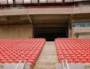 Corrida dos Estádios - Arena pernambuco (Foto: Divulgação )