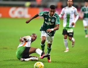 Tche Tche Palmeiras America
