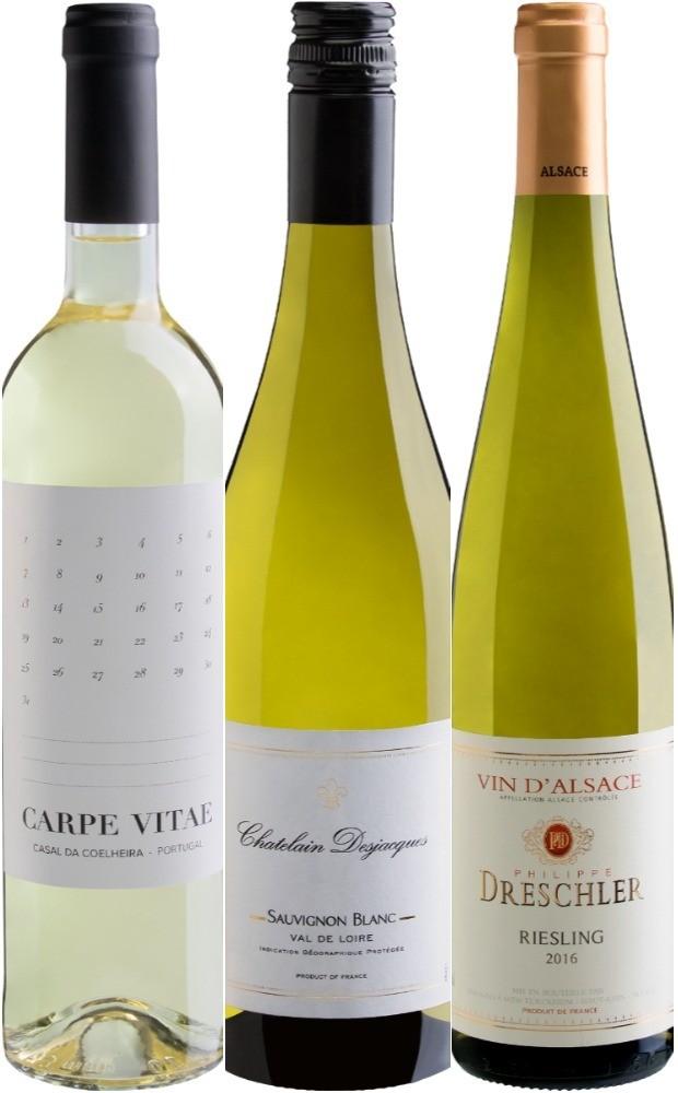 Os vinhos indicados:  (Foto: Divulgação)
