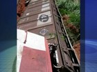 Vagões carregados com soja descarrilam em Votuporanga