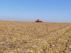 Primeira estimativa da Conab para a safra de grãos contém incertezas