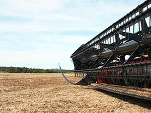 colheitadeira de soja em MT (Foto: Leandro J. Nascimento/G1)