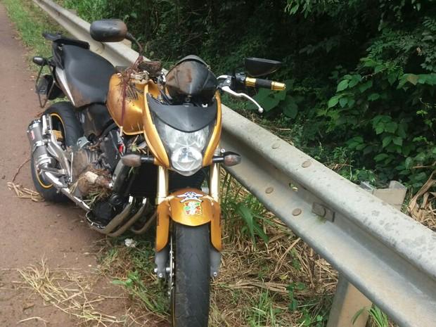 Motociclista morreu no local do acidente na BR-282 em Saudades,SC (Foto: PRF/Divulgação)