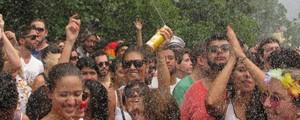 Cerca de 1,5 milhão de pessoas participaram da folia de rua de SP (Ana Paula Okumura/G1)