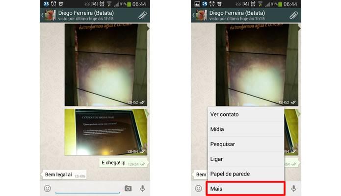 Para deletar toda a galeria e as mensagens da conversa, aperte na tecla função e selecione a opção em destaque (Foto: Reprodução/Daniel Ribeiro)