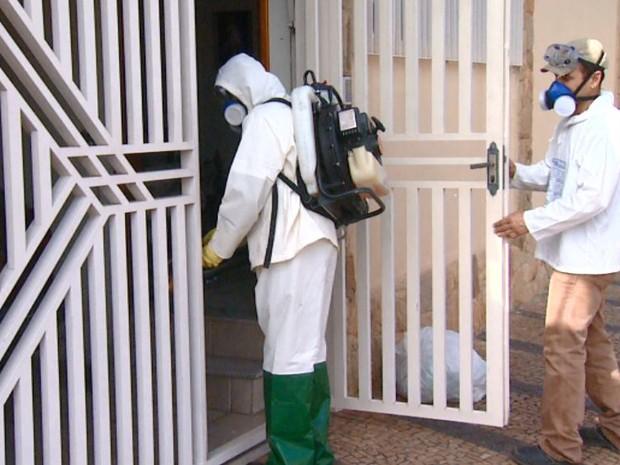 Nebulização contra o mosquito da dengue em Rio Claro (Foto: Paulo Chiari / EPTV)