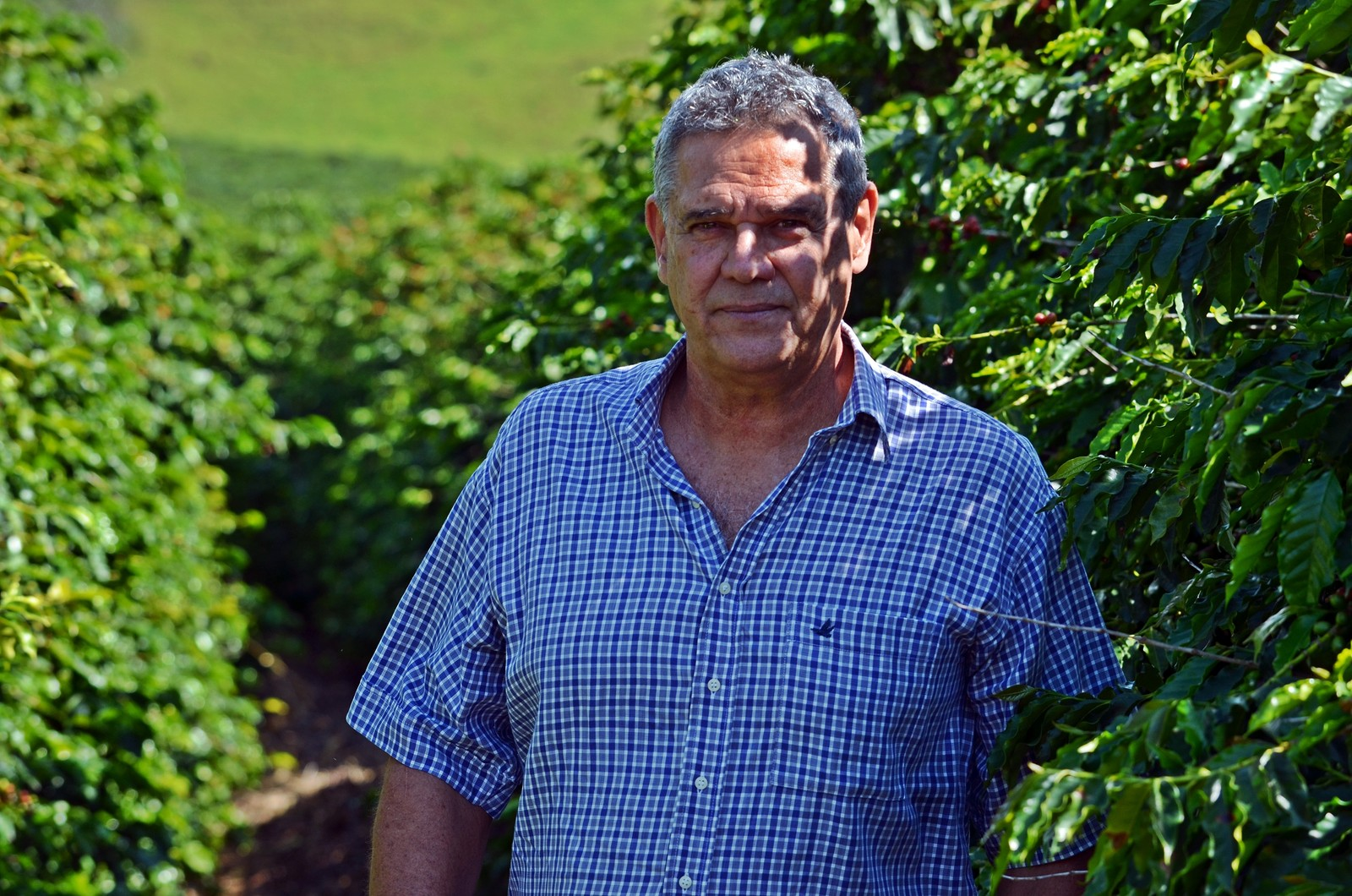 Cafeicultor largou consultórios para cuidar da propriedade do sogro há 40 anos em Machado (Foto: Lucas Soares)