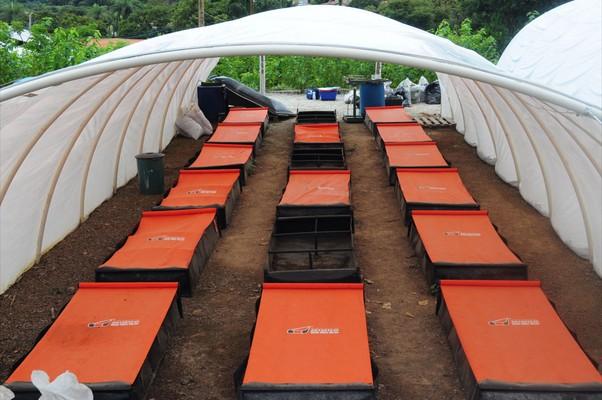 A proposta da empresa é realizar o cultivo em espaços limitados (Foto: Divulgação)
