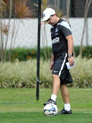 Enderson Moreira técnico do Santos (Foto: Ivan Storti / Santos FC)