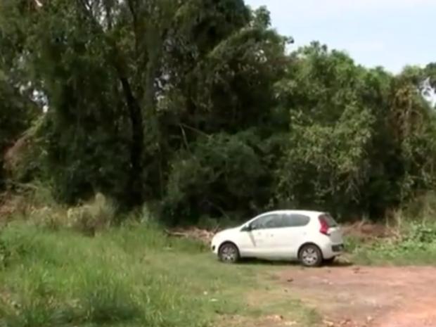 Técnicos estiveram na mata onde macaco com febre amarela foi encontrado (Foto: Reprodução/TV TEM)
