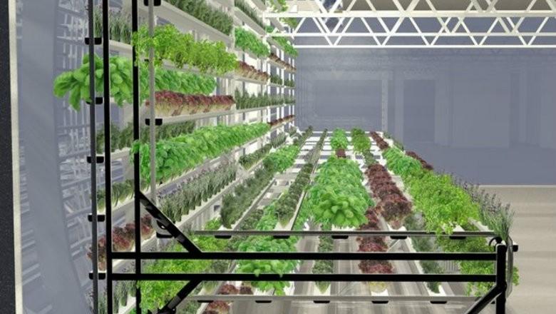 agricultura_fazenda_vertical (Foto: Reprodução)
