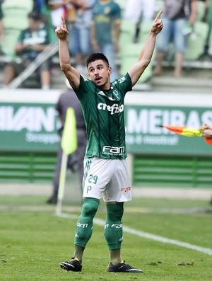 Palmeiras x São Paulo - comemoração gol Willian (Foto: Marcos Ribolli)