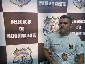 Delegado Sávio Pinto, titular da Delegacia de Meio Ambiente de Macapá (Foto: John Pacheco/G1)