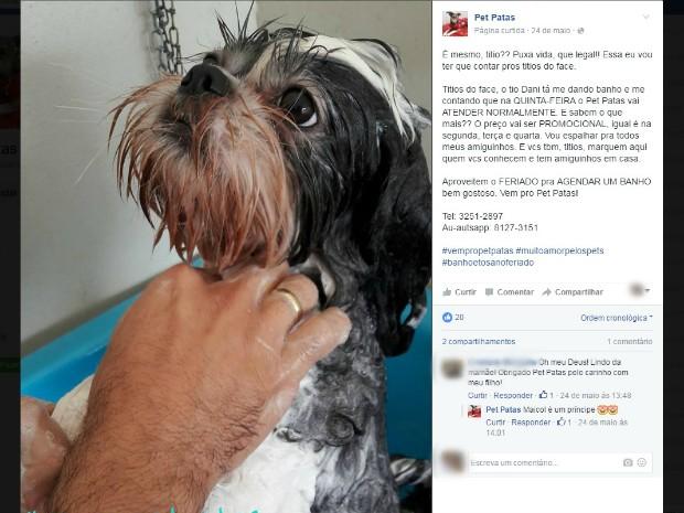 Pet patas Jardim (Foto: Reprodução/ TV Morena)