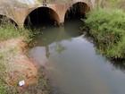 Promotorias cobram cumprimento de decisão para recuperar Rio Pitimbu