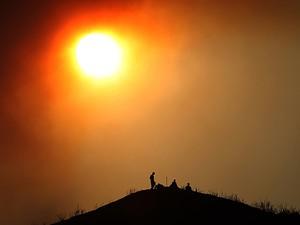 Mudanças climáticas podem alterar comportamento e agressividade, diz estudo