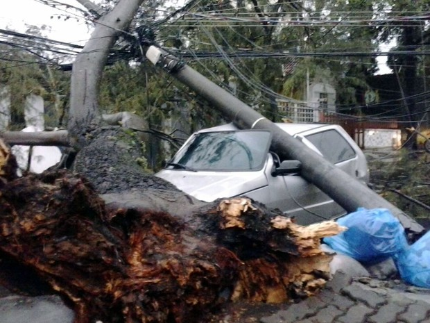 Árvore e poste caem sobre carro na Rua Barão do Piracicamirim, entre Avenida Carlos Botelho e a São João, em Piracicaba (Foto: Maria Cristina de Almeida Leme/Arquivo Pessoal)