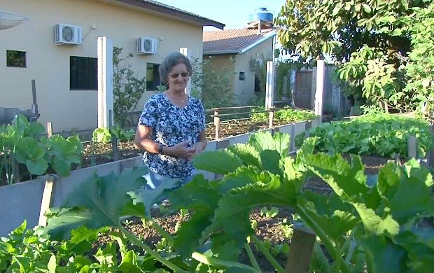Ana Geralda cultiva frutas, horatalizas e verduras em seu quintal (Foto: Rondônia TV)