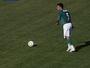 Memória: Em 2005, Leão dá bronca, Verdão vence Flu e vai à Libertadores
