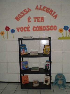 Biclioteca comuntária já tem 80 livros doados (Foto: Divulgação)