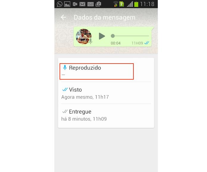Informações sobre uma conversa enviada no WhatsApp para iPhone (Foto: Reprodução/Marvin Costa)
