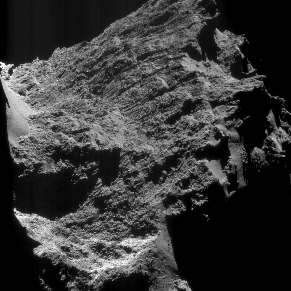 cometa (Foto: Rosetta)