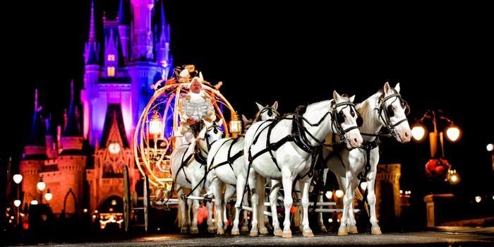 Casamento noturno no Magic Kingdom (Foto: Divulgação)