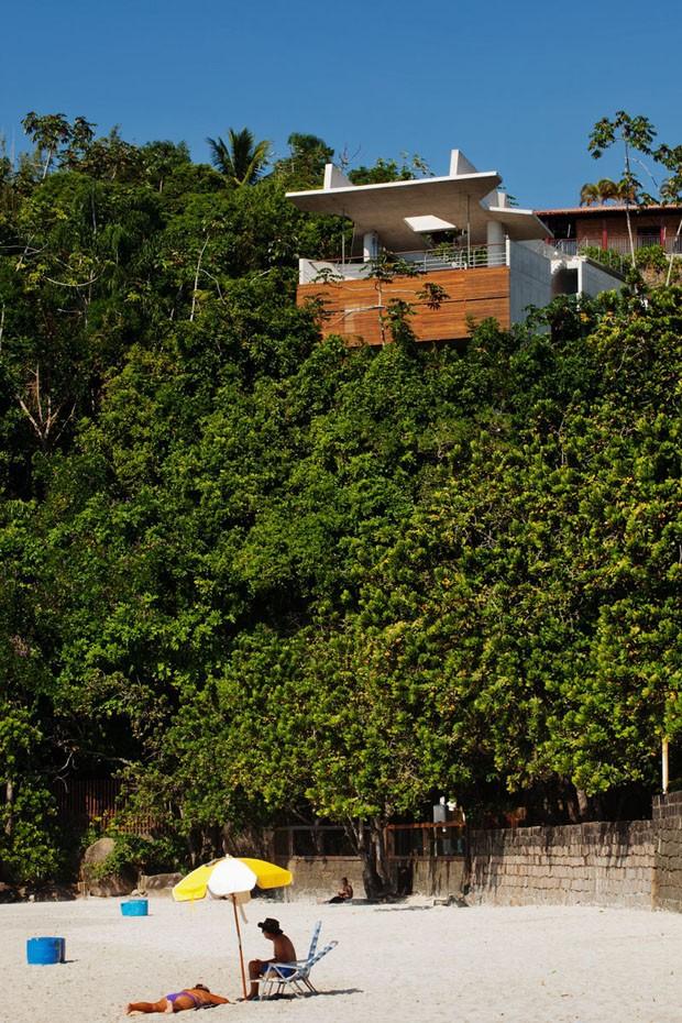 Arquitetura surpreendente permite ver o mar do alto da floresta