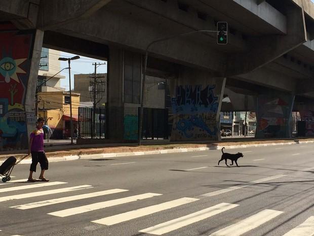 Nas imediações da estação Carandiru do Metrô, semáforo da Avenida Cruzeiro do Sul fica aberto para carros por 5 minutos e 25 segundos. Pedestres passam a se orientar pelo momento com menor fluxo de veículos (Foto: Vivian Reis/G1)