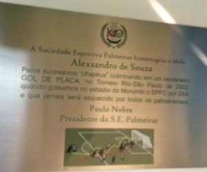 Alex Placa Palmeiras (Foto: Rodrigo Faber)