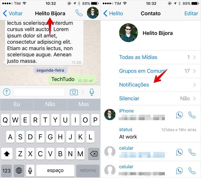 Acesse os detalhes do contato ou grupo (Foto: Reprodução/Helito Bijora)