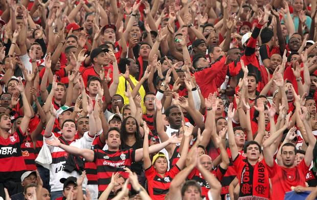 torcida Flamengo jogo Criciúma (Foto: Nina Lima / Agência O Globo)