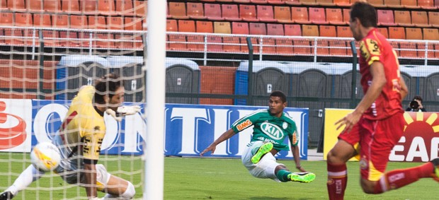 Marcio Araujo gol Palmeiras (Foto: Leo Martins / Ag. Estado)