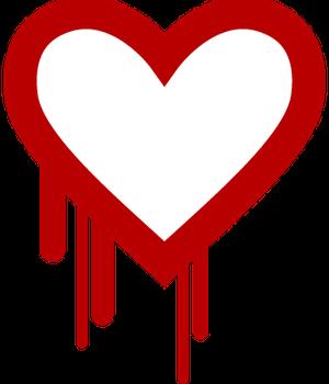 Uma falha em um sistema de criptografia usado por 66% dos sites da internet deixou vulneráveis informações delicadas dos usuários (Foto: Reprodução)